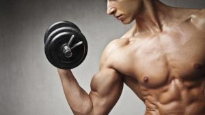 How does the crazy bulk body muscle mass supplement works?
